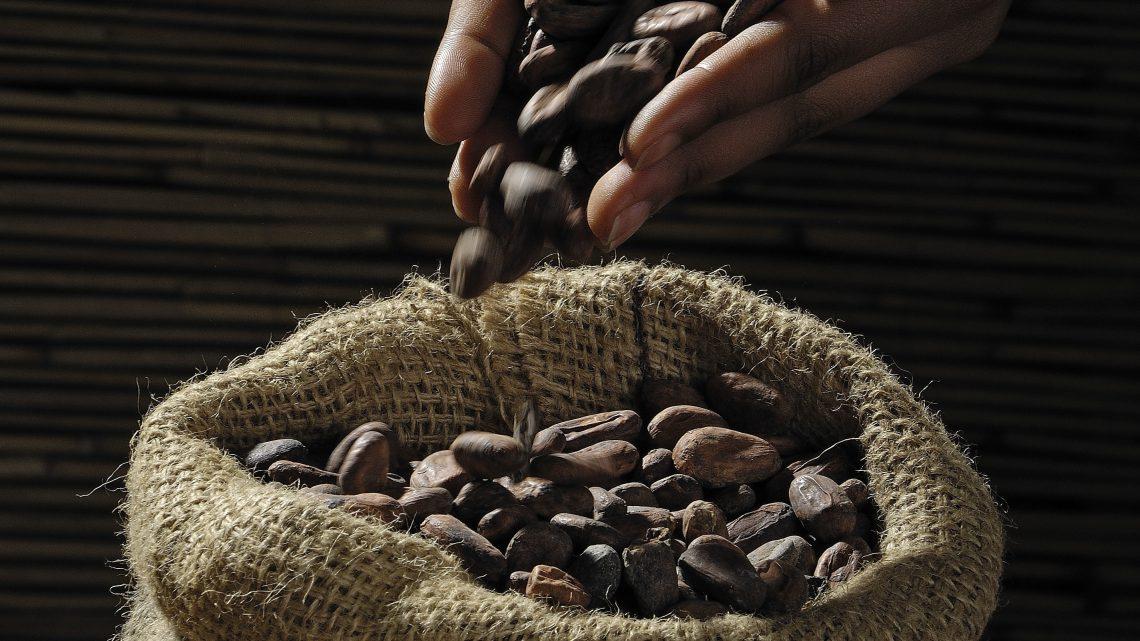 De verschillende koffiesoorten